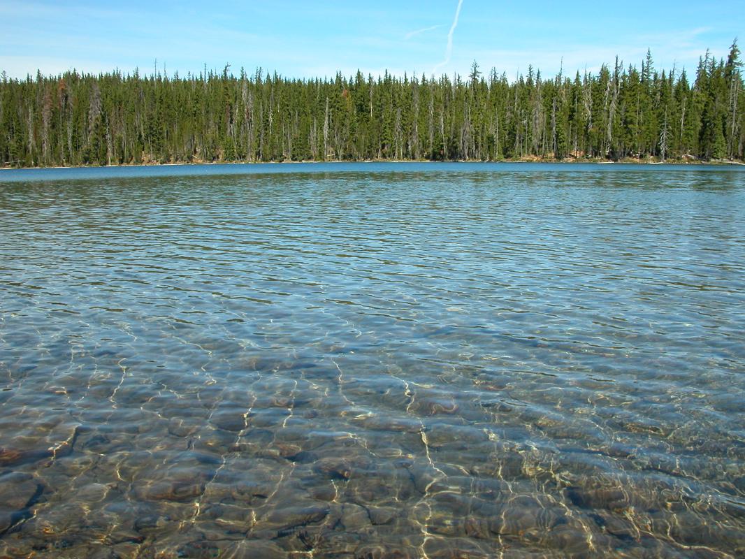 Under Lake Water | Wallpapers GalleryLake Water Wallpaper